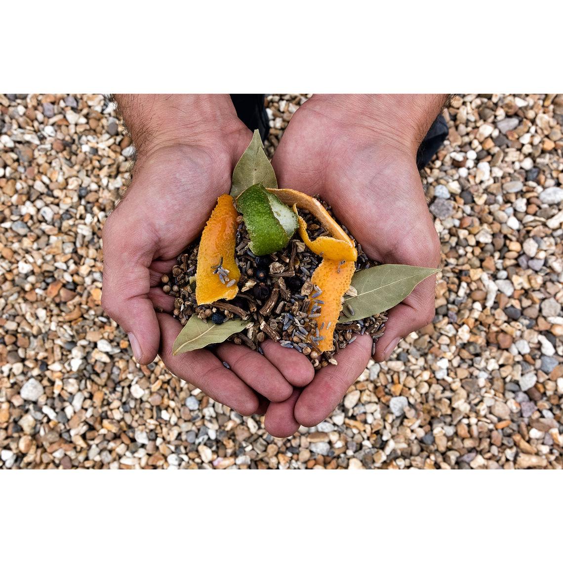 pdp gin botanicals 1 1