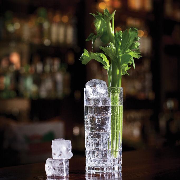 celery gin tonic lifestyle 682x1024px e nr 4178