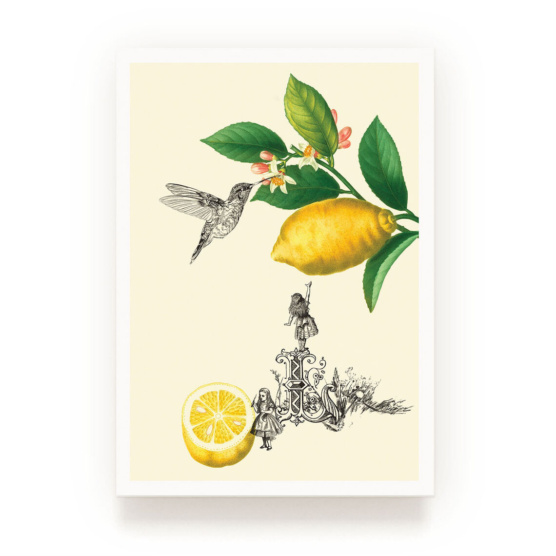 pw shop cards lemon 3sq